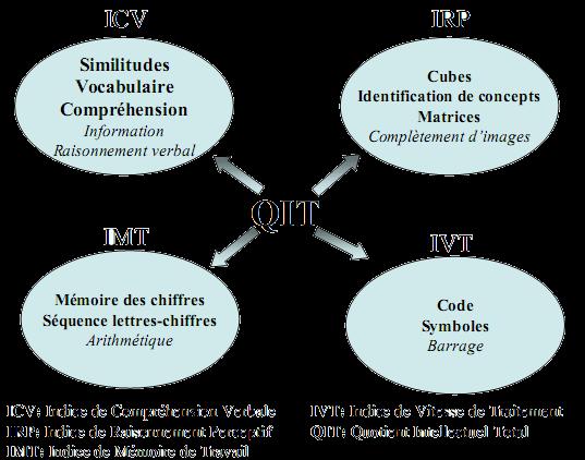 Structure du WISC-IV